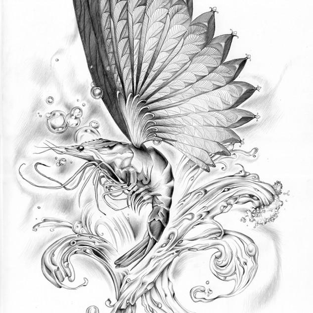 Flying shrimp