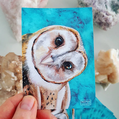 Set of 3 stickers 'Barn owl'