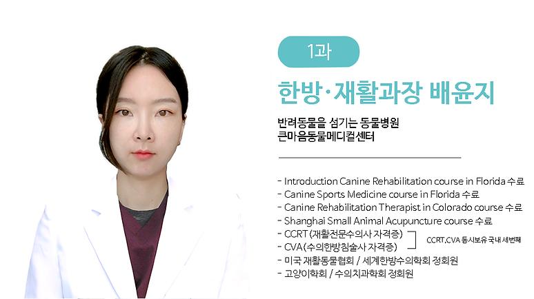 배윤지팀장님2.png