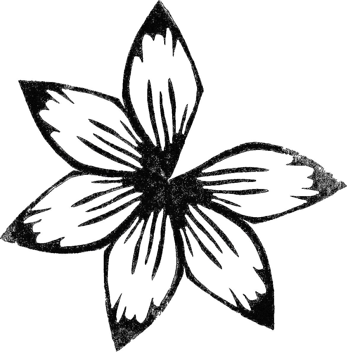 fleur5