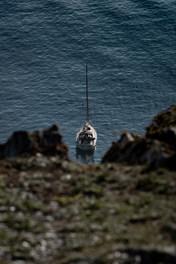 SEA_FORTS_NATURE-1107378.JPG