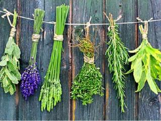 Las plantas esotericas en la magia