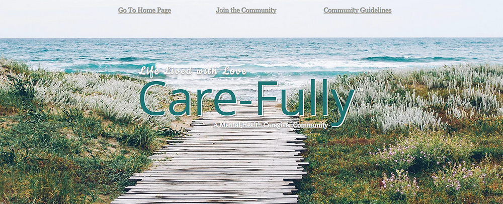 Care-FULLY Link to log-in or join