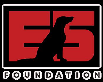 E5 Foundation.webp