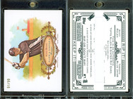 2008 Topps Allen & Ginter - Rip Cards #RC22 (Ripped)