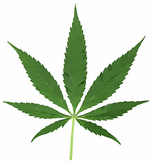 cannabis-297097_1280.png