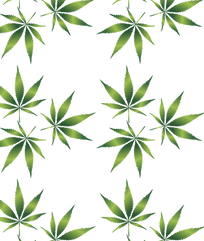 cannabis-1032131_1280.png