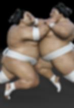 sumoringer-3199591_1920.png