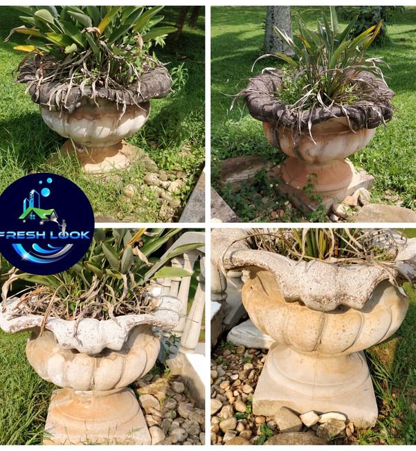 Concrete flower pots cleaning