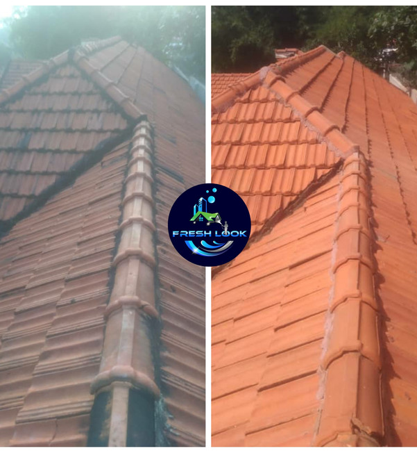 Roof tile cleaning