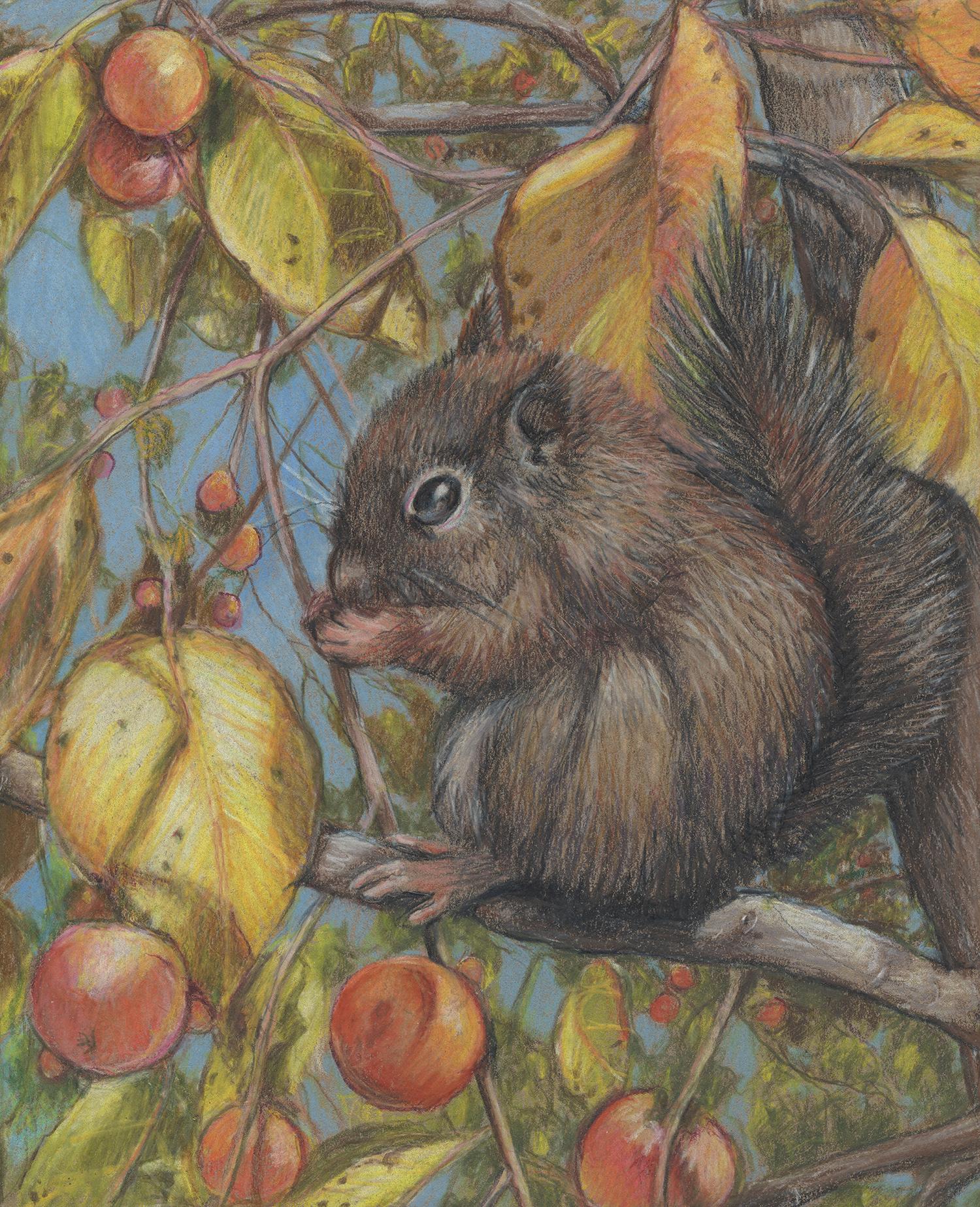 ThySquirrel