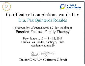 Entrenamiento_Terapia_Familiar_Focalizad