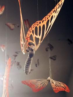 The Offering Exhibit - Monarchs