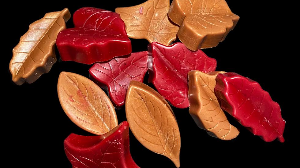FALLEN   English Oak & Hazelnut