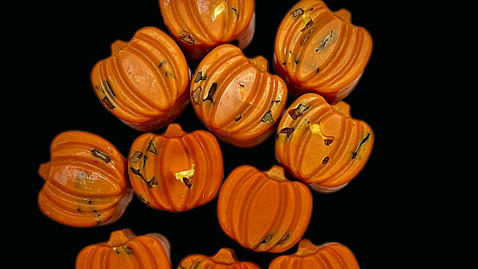 SAMHAIN | Pumpkin Spice