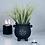 Thumbnail: PENTAGRAM | Cauldron Plant Pot