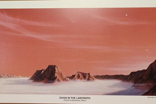 Dawn in the Labyrinth