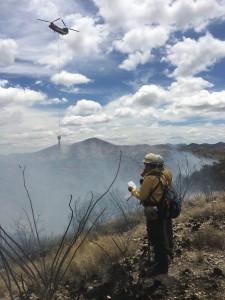 Wildland Firefighter Safety at Wildland Fires