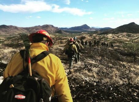 Wildland Fire Season
