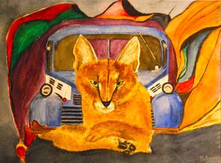 Cat (Caracal) on a Hot Tin Truck