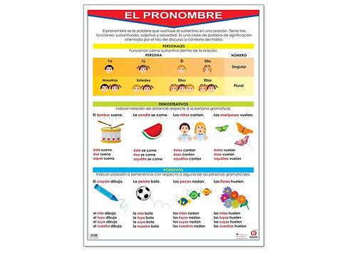 Poster -  Pronoun Ready to Hang: Póster el Pronombre con Bastón