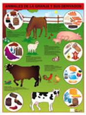 Poster - Farm Animals Ready To Hang: Póster Animales de la Granja Con Bastón