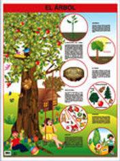 Poster -  Tree Ready To Hang: Póster El Árbol.
