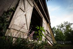 Dubinsky Photography