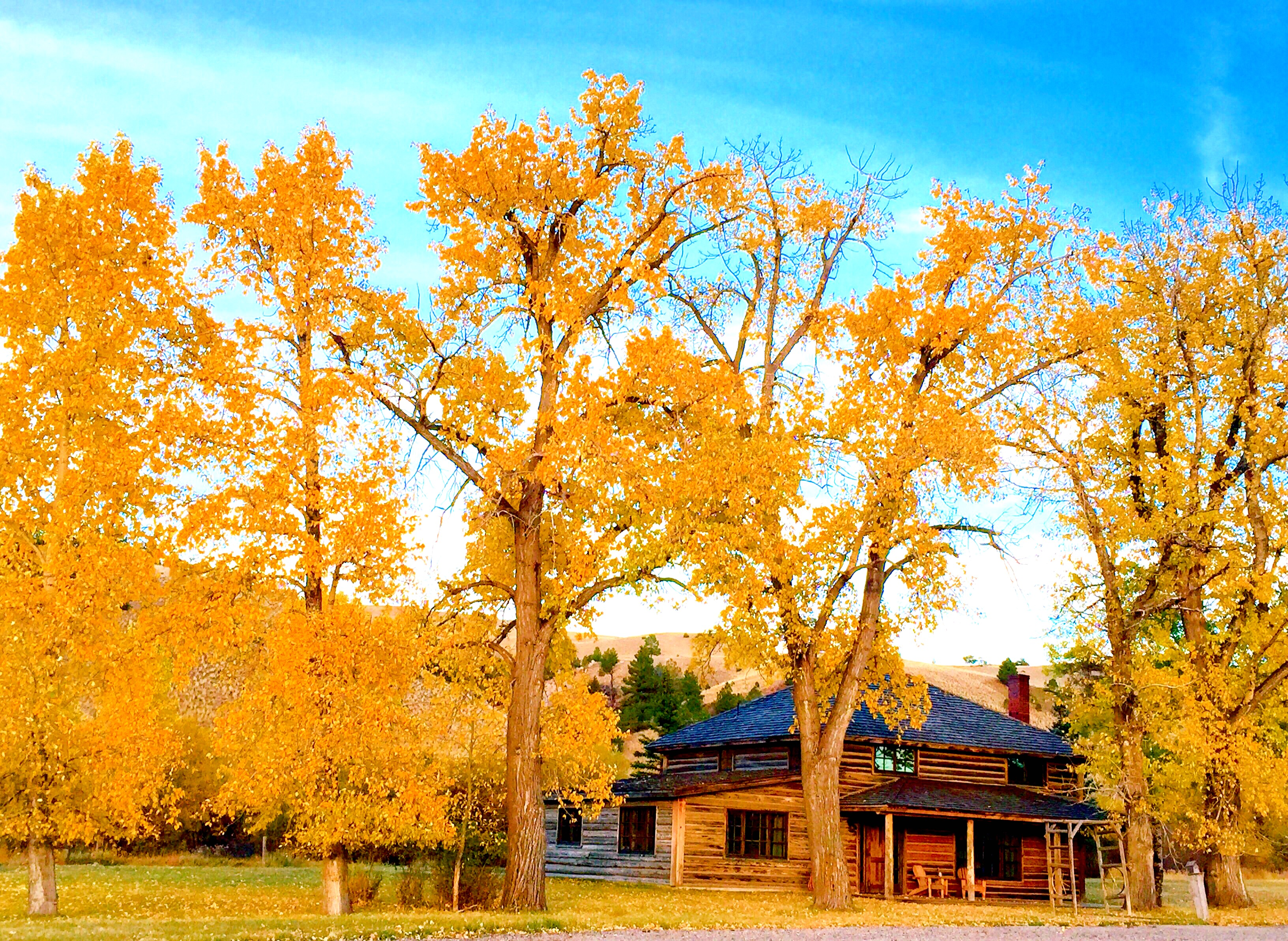 Willow Creek Cabins Fall