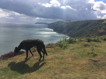 Shadow on Foreland point, looking towards Porlock