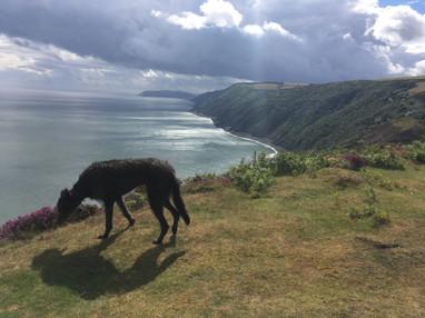 Shadow on Foreland point, looking towards Porlock