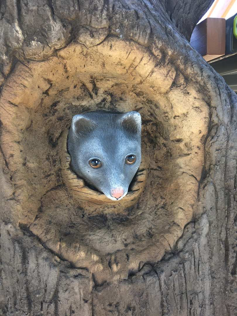 Handcarved Possum. Nature Inspired Play Playground. Treehouse. Perth School Supplier