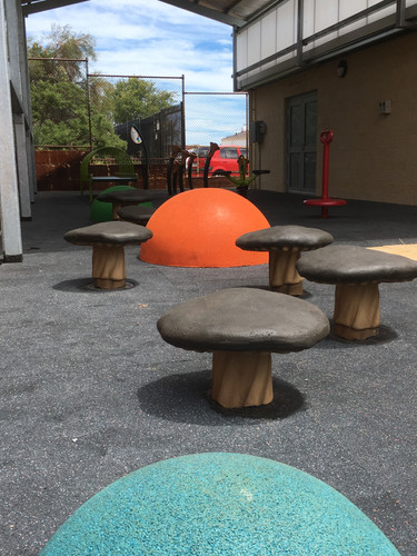 Mushroom Steppers. Rubber Domes. Western Australia Supplier. North of the River School