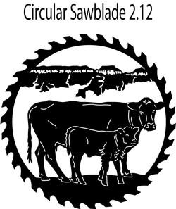 Circular-Sawblades-2.12