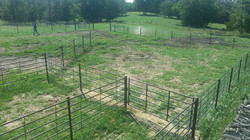 6x6 Continuous Fence Panel