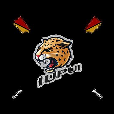 Roing logo.png