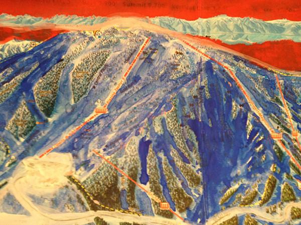 alpine2.jpg