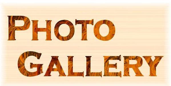 PhotoGalleryLogo.jpg