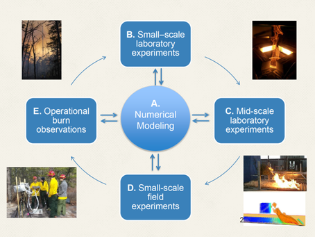 Fine Scale, Big Scale: Wildland Fire Dynamics Research for Informed Management