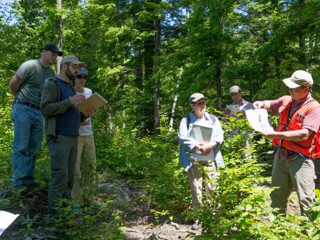 Fire in Oak Workshop Recap: Regional Differences, Local Applicability