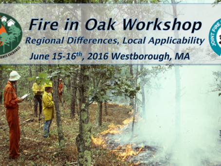 Workshop: Fire in Oak - Regional differences, local applicability