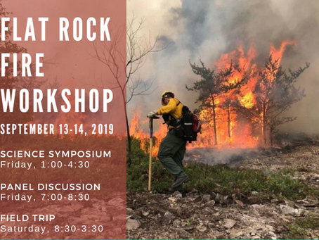 Workshop/field trip: Flat rock jack pine wildfire