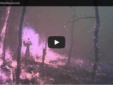 NJ Pinelands Prescribed Burn Research Project Video: Monitoring Equipment