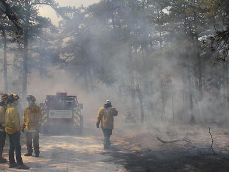 Webinar: Wildland firefighter fatalities in the context of prescribed fire