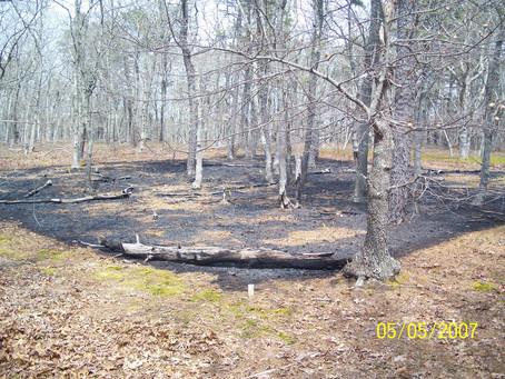 Managing Fuels in Northeastern Barrens: Manuel F. Correllus State Forest on Martha's Vineyard