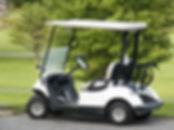 golf-cart[1].jpg