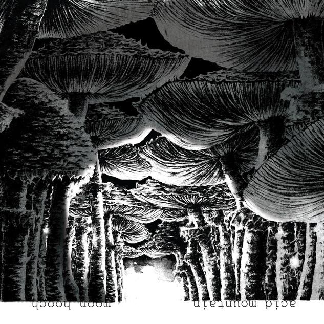 Acid Mountain - Moon Hooch