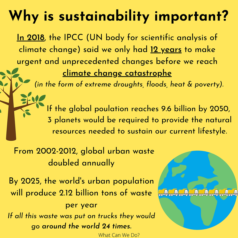 Yellow slide with facts about why sustainability is important