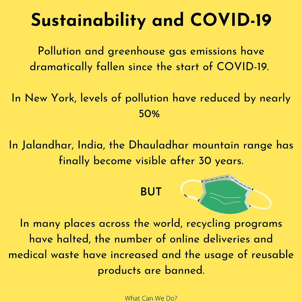 Yellow slide looking at facts around sustainability and COVID-19