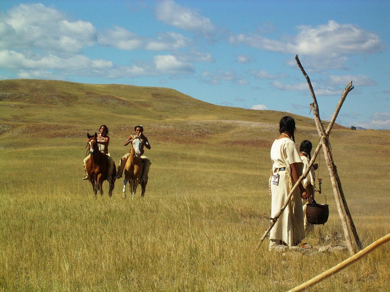 'Return of the Buffalo' Discovery
